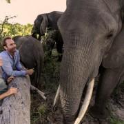 Abu Camp - Delta del Okavango