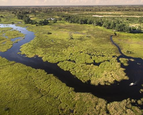 Duba Plains Camp en el Delta del Okavango