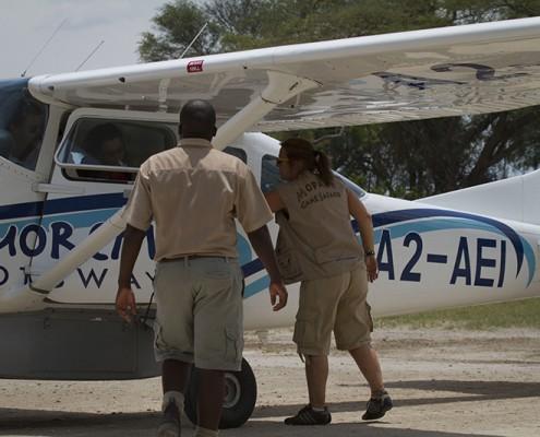 Avionetas en el Delta
