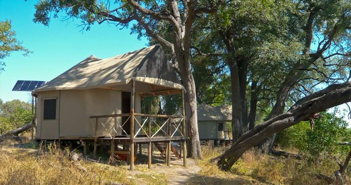 Camp Linyanti