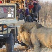 Campamento Lujo Botswana