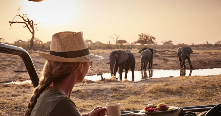 Savute Elephant Lodge