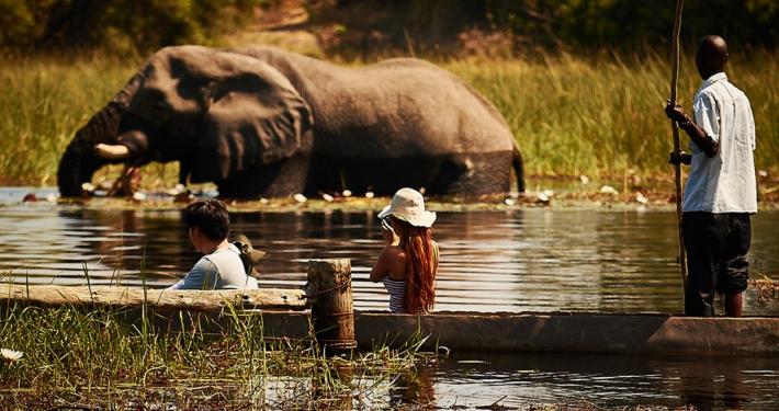 Actividad de mokoro desde Croc Camp