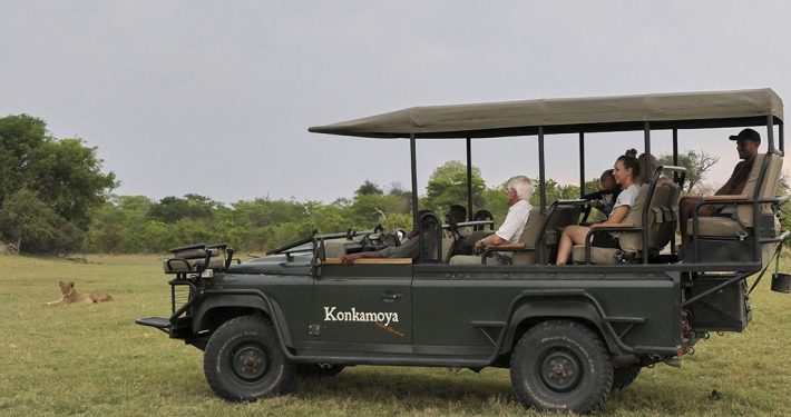Konkamoya - Safari