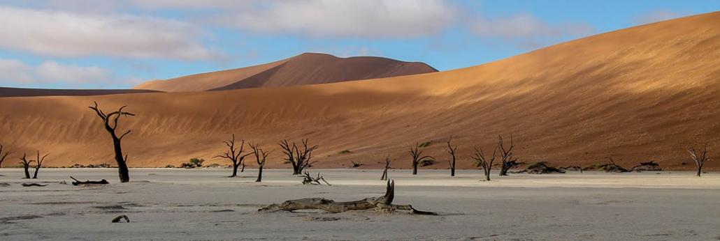 Dead Vlei - Desierto del Namib