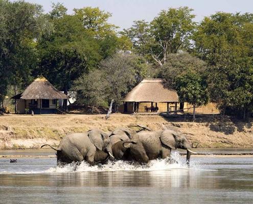 Nsefu Camp frente al río Luangwa