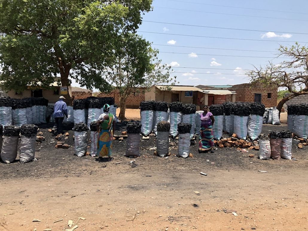 Viaje Zambia - Puestos de carbón