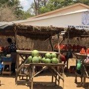 Viaje Zambia - puestos de fruta en la ruta