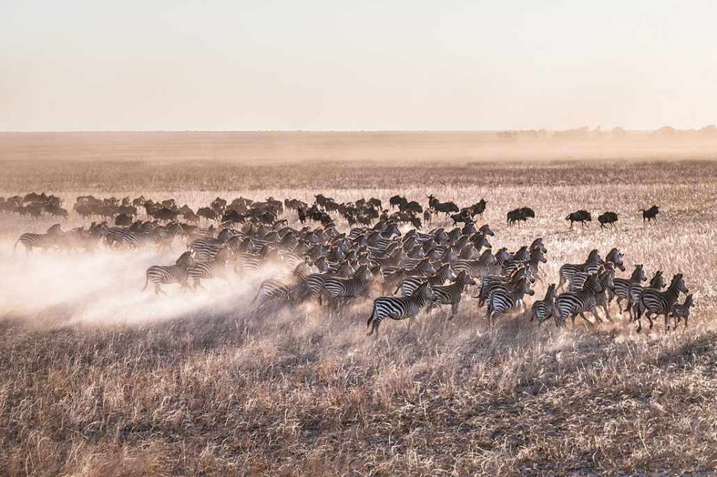 Liuwa Plains - African Parks