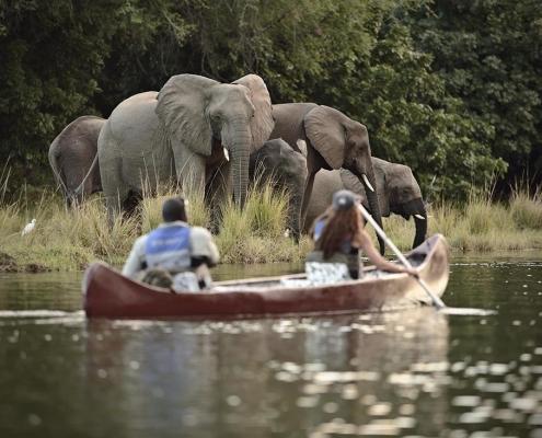 Safari en canoa - Visita en Time + Tide Chongwe River Camp