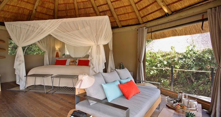 Suite - Lion Camp