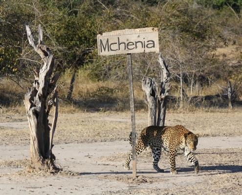 Visitante en Time + Tide Mchenja