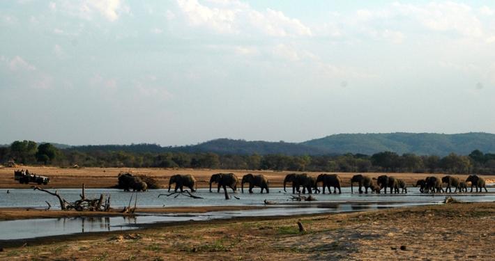 Three Rivers Camp - Safari