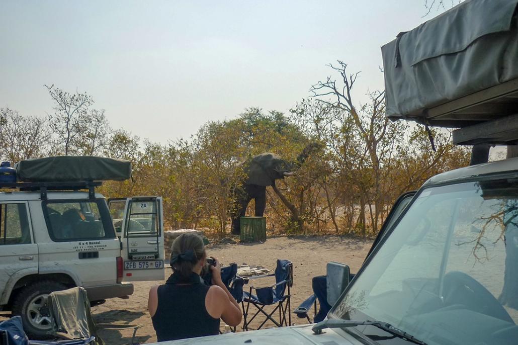 Camping en Savute